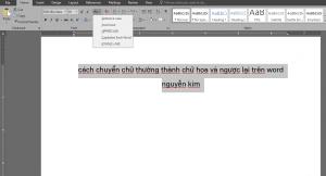 Cách chuyển chữ in hoa trong word